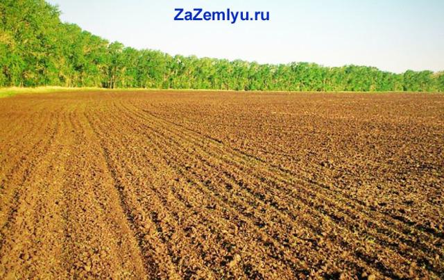 Земельный пай - что такое и как продать
