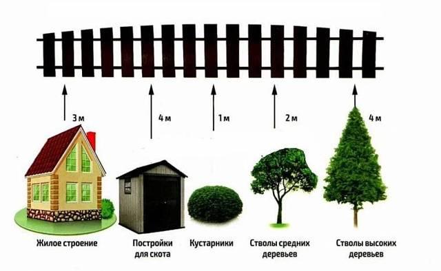 Расстояние между строениями на дачном участке