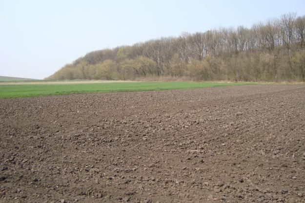 Стоимость земельного пая - как узнать?