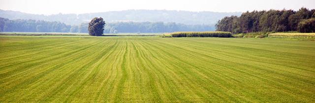 Как перевести землю сельхозназначения в ижс