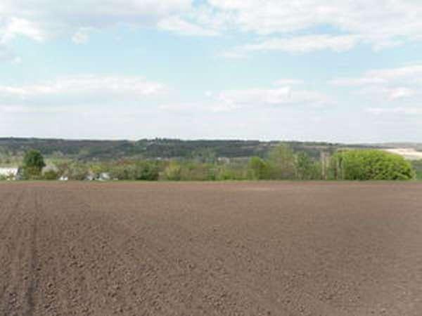 Как купить земельный пай сельхозназначения