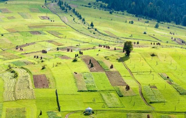 Земельные паи сельхозназначения по закону