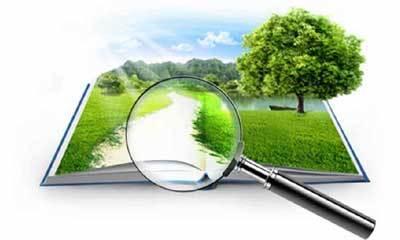 Оценка кадастровой стоимости земельного участка