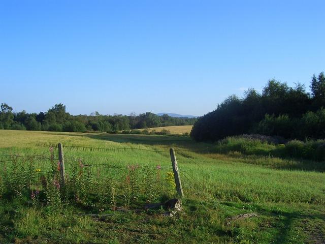 Регистрация договора аренды земельного участка: инструкция, документы, стоимость