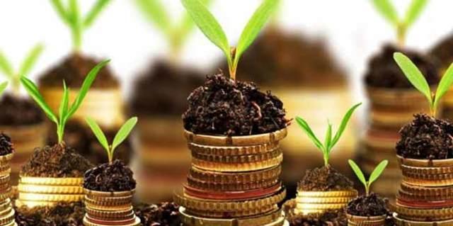 Земельный налог в 2020 году для ИП