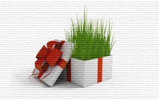 Земельный пай - можно ли подарить?